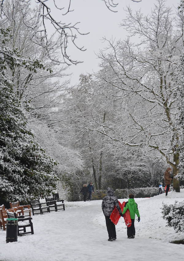Winter comes to Waterlow Park