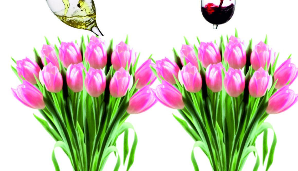 Spring Socia cropl