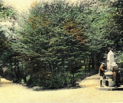 Highgate Wood (2) (resized)