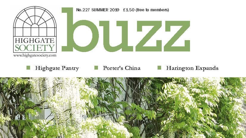 Buzz 227 cover WEB crop (2)