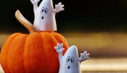 halloween crop