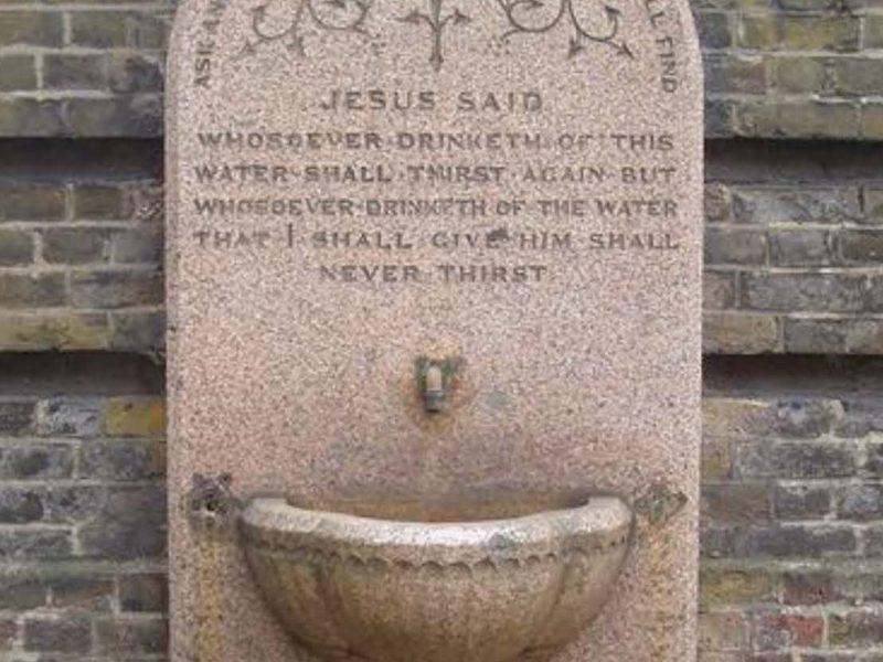 Drinking fountain crop