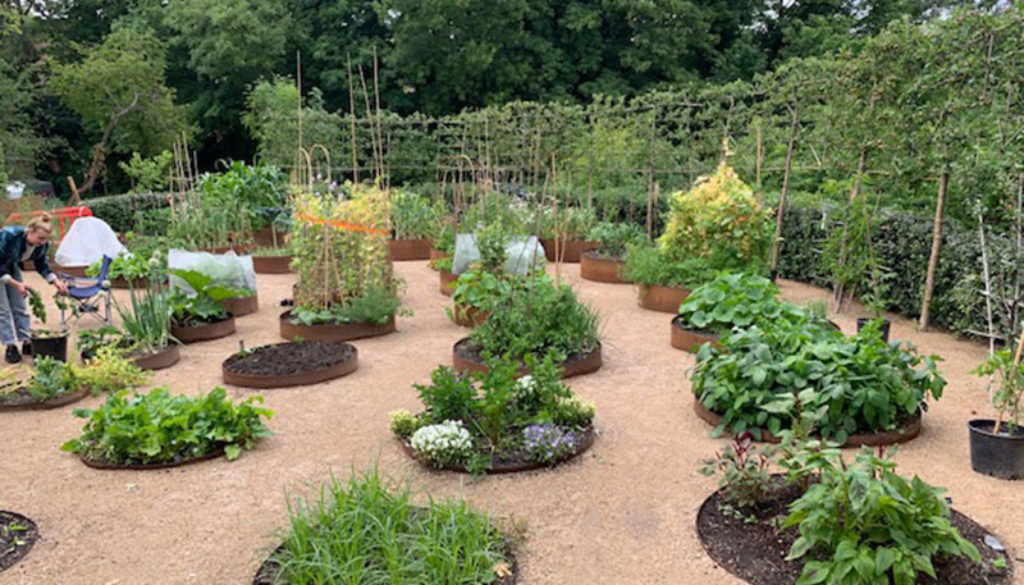 Omved kitchen garden for web