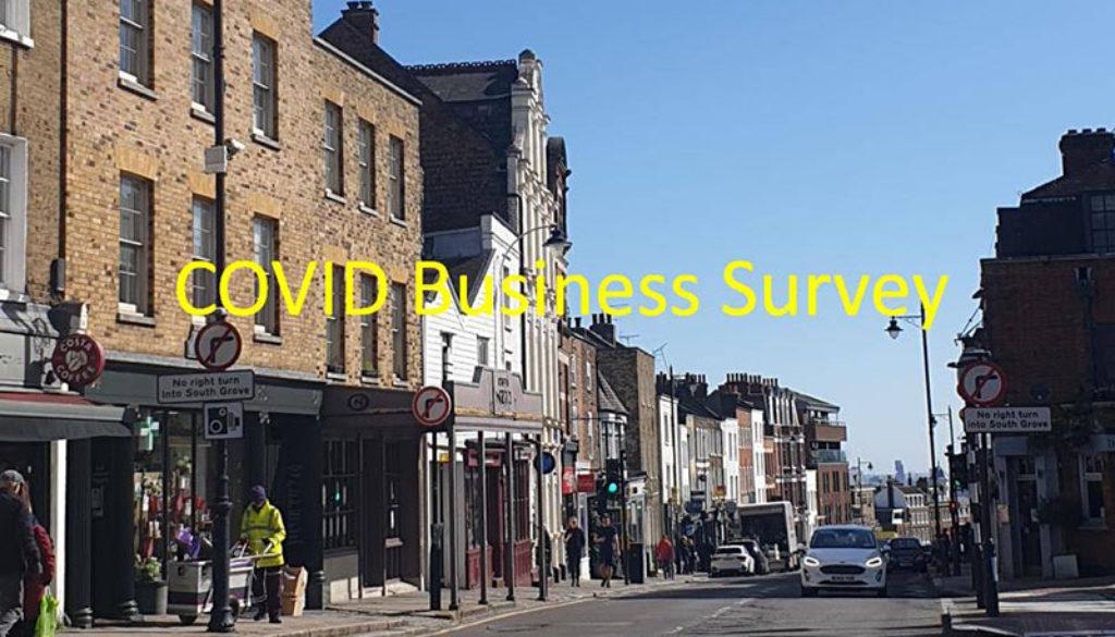 COVID Business Survey